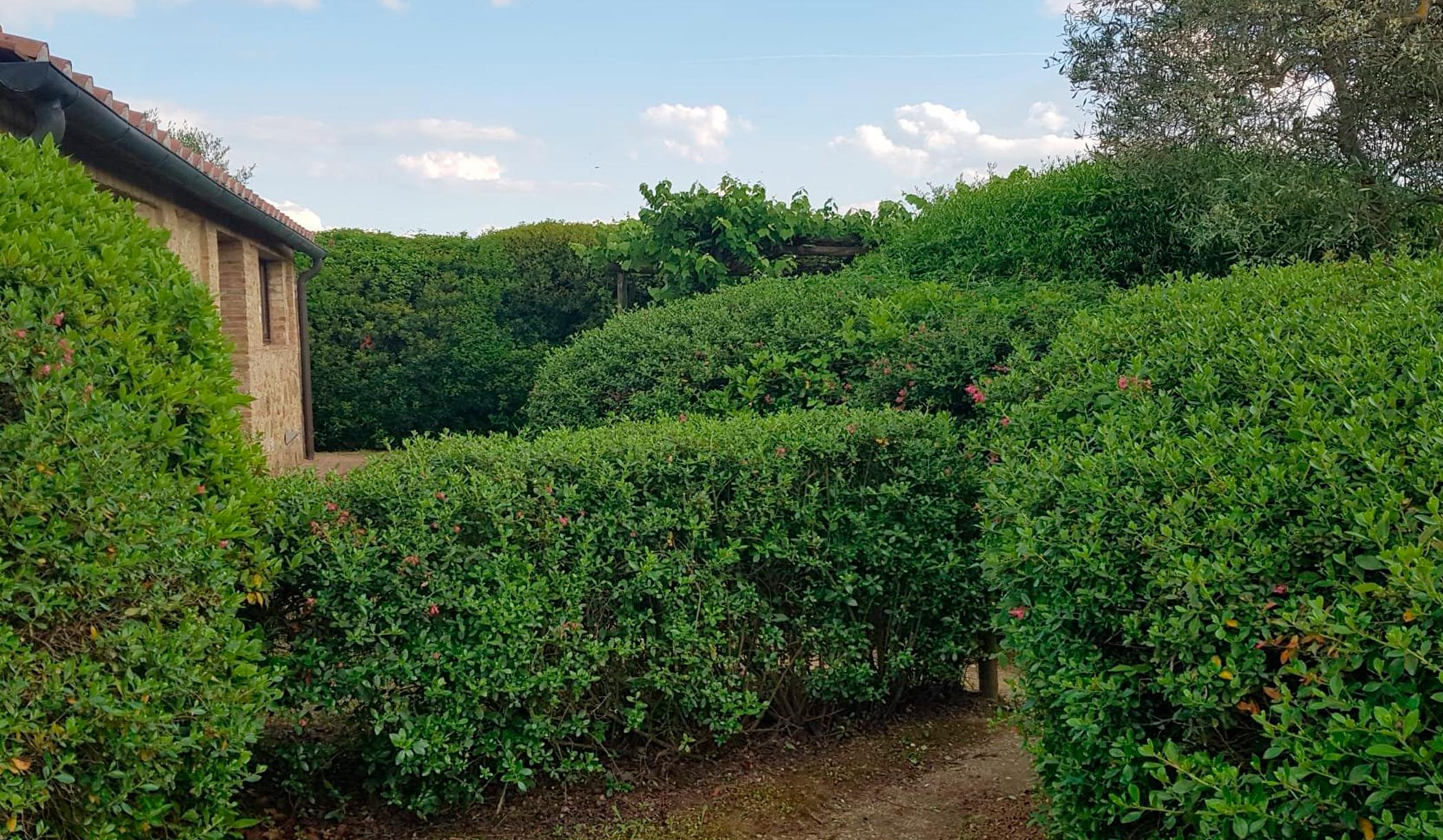 Impresa di giardinaggio a Poggibonsi