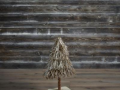 albero piccolo
