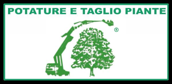 Tardivo Cav. Giovanni & Figli Potature e Taglio Piante Treviso
