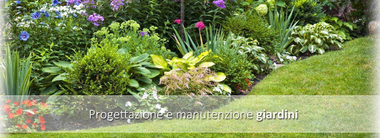 giardiniere cura e creazione del verde ferrazza potature Roma