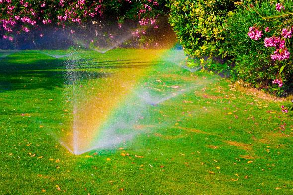 impianti di irrigazione giardini Ferrazza Potature Roma