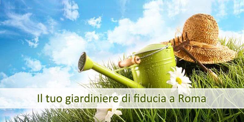 Servizi di giardinaggio Ferrazza Potature Roma