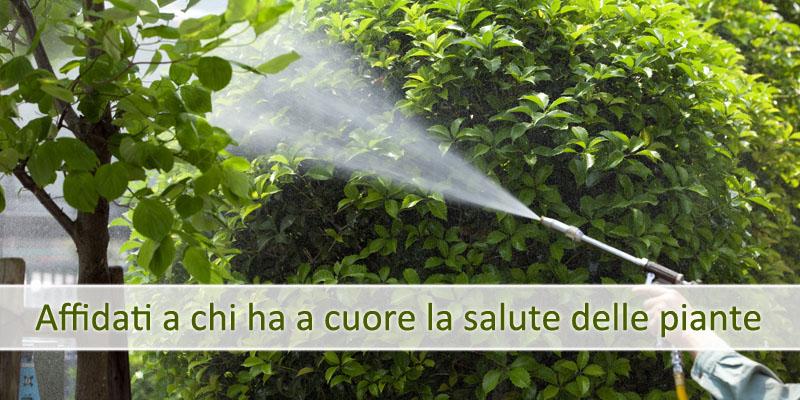disinfestazioni e derattizzazioni giardini Ferrazza Potature Roma