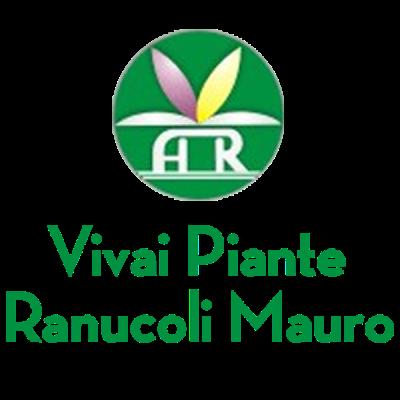 www.ranucolipiante.com