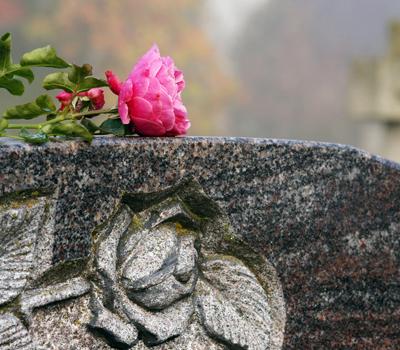 tumulazione onoranze funebri vignoli Roma Appia Tuscolana