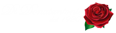 www.onoranzefunebrididonatantonio.com