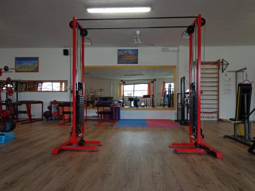 Programmi di allenamento per atleti