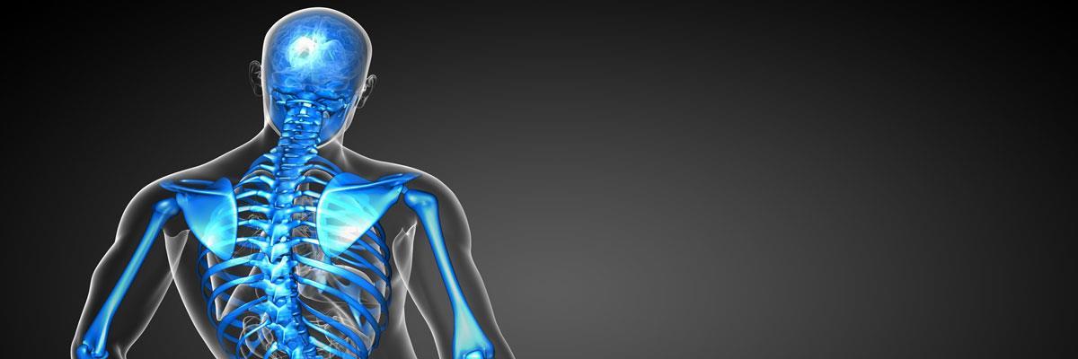 Vendita prodotti ortopedici