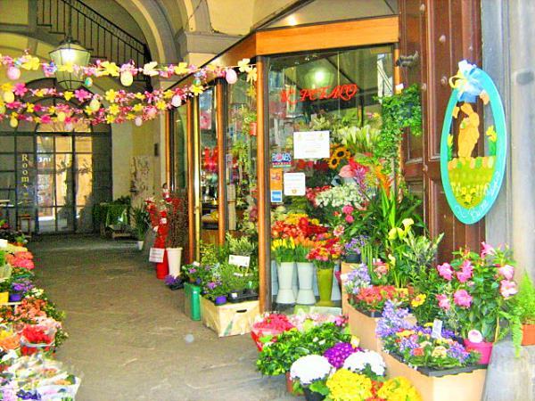 Il Petalo negozio fiori