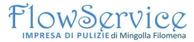 www.flowpulizie.com