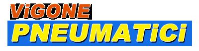 www.pneumaticivigone.it