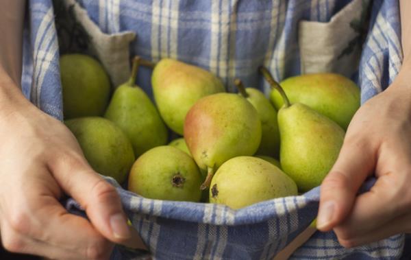 frutta e verdura Treviglio