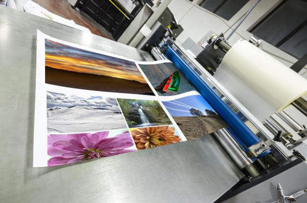 servizi di stampa foto Siena