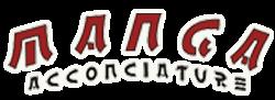 Manga Acconciature