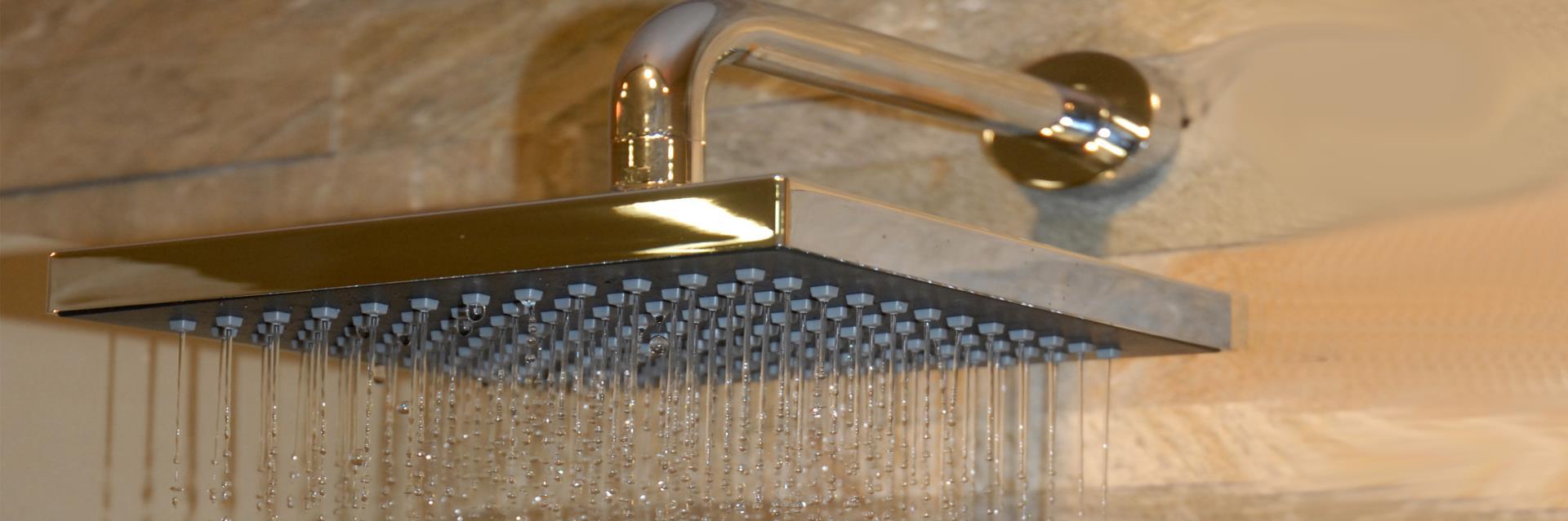 cipolla doccia
