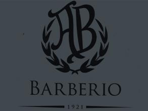 www.magazenanonconvenzionalebarberioalbino.com
