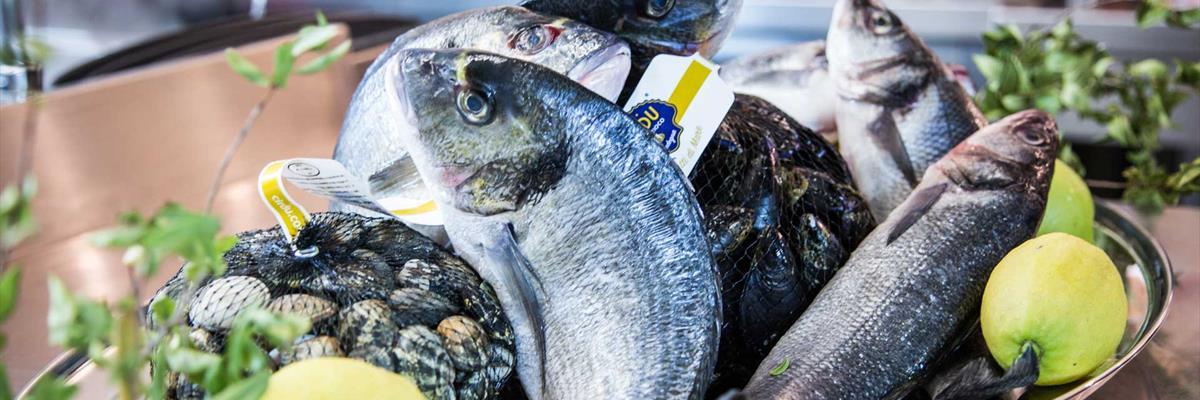 cucina algherese pesce fresco Alghero