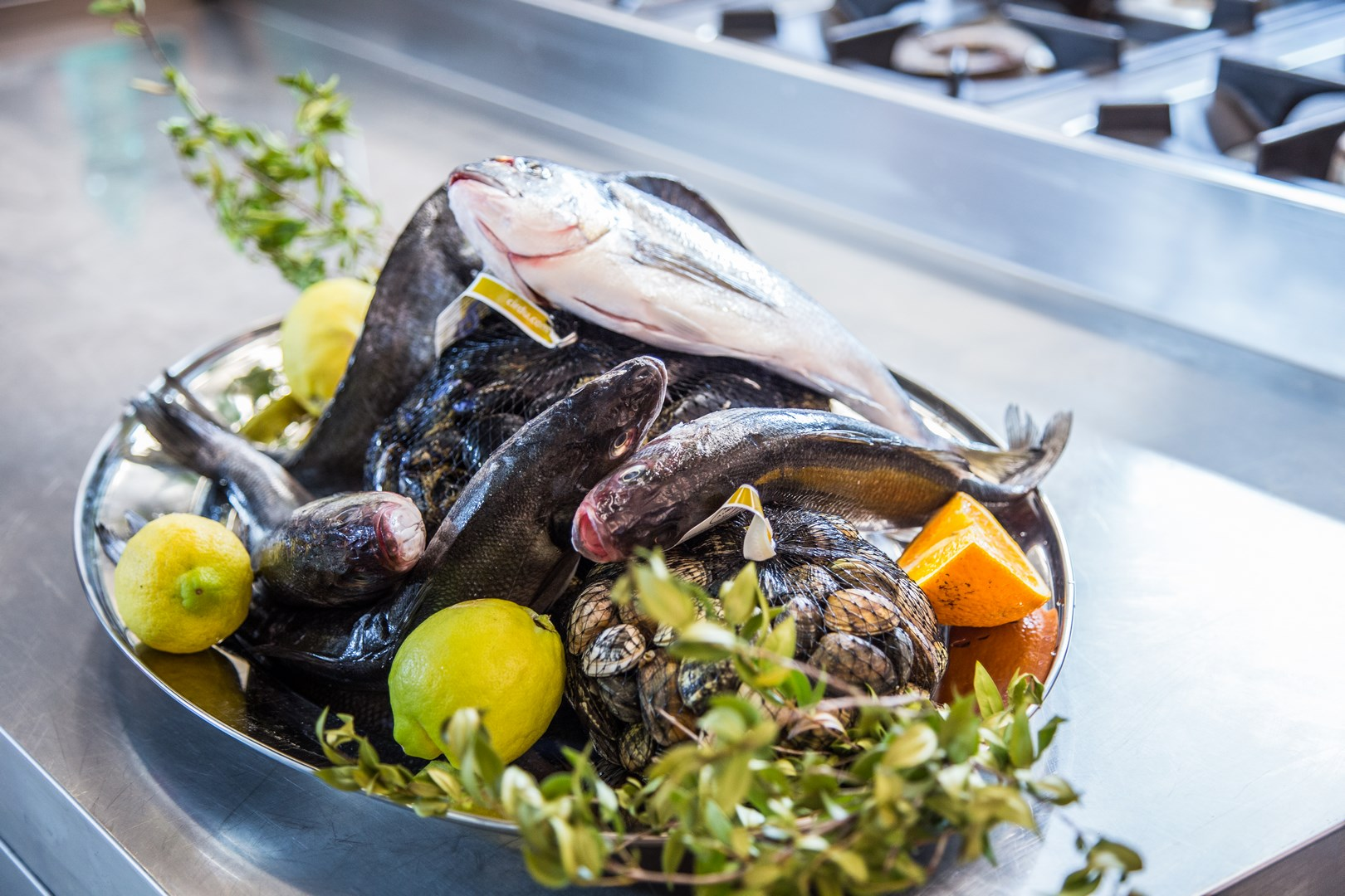 Ristorante di pesce Gioberti ad Alghero