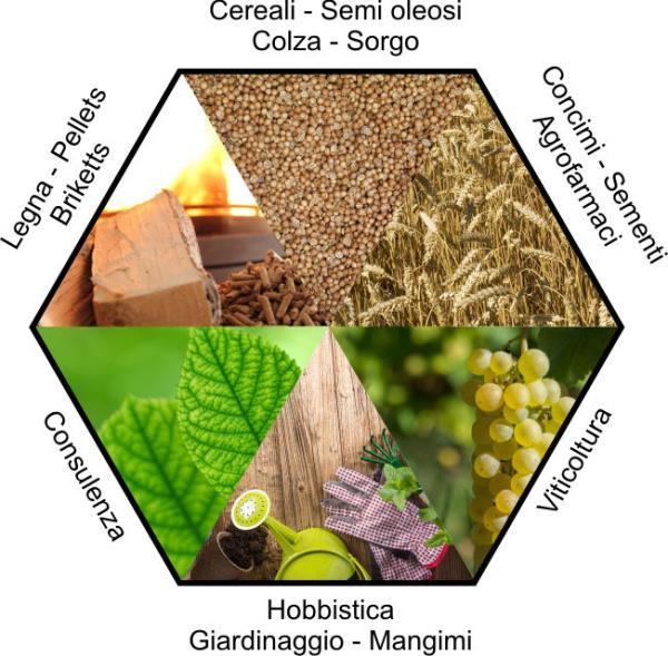 vendita prodotti agricoli Treviso