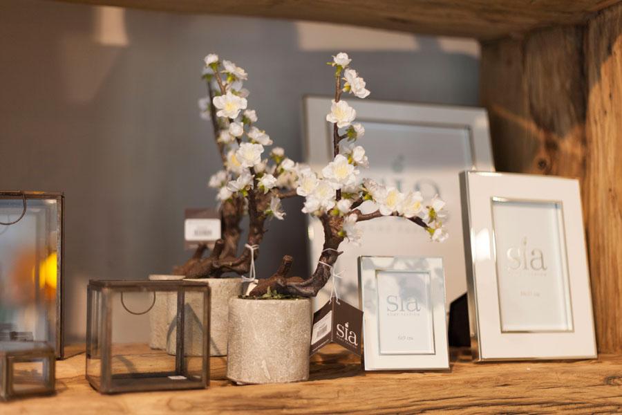 negozio lista nozze Bastia Umbra