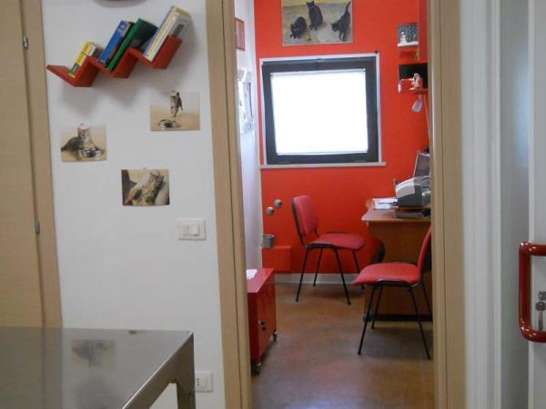 ambulatorio veterinario Panicale - Perugia