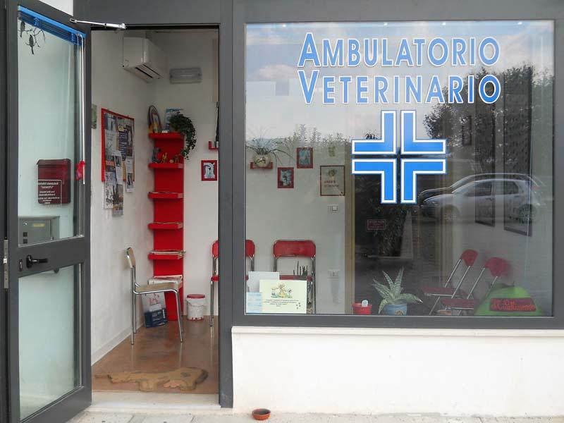 ambulatorio veterinario h24