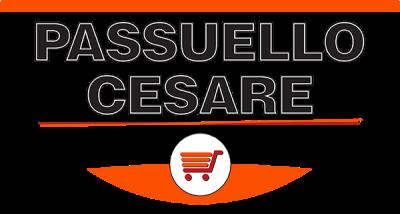 www.passuellocesare.it