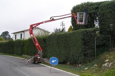 per la salute degli alberi