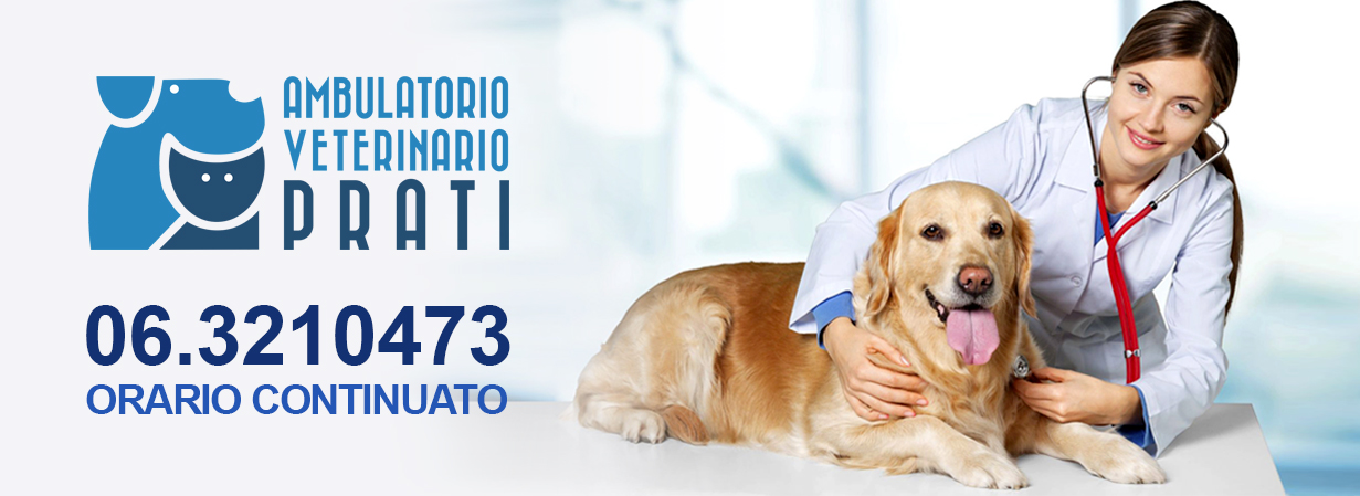 orario continuato ambulatorio veterinario roma prati