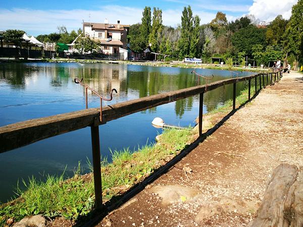 vendita pesce lago Roma