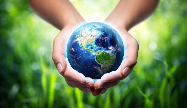 energy manager, risparmio energetico, rispetto per l'ambiente