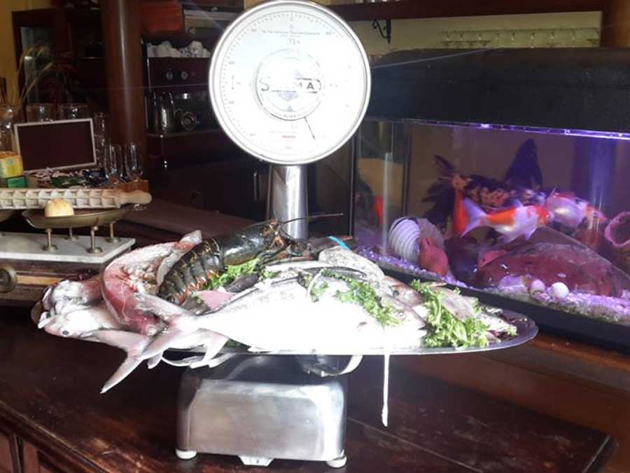 Ristorante pesce Viterbo