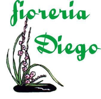 www.fioreriadiego.it