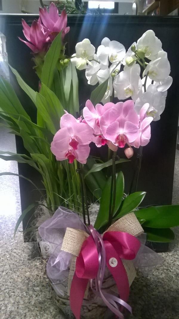 composizione fiori arredo casa Treviso