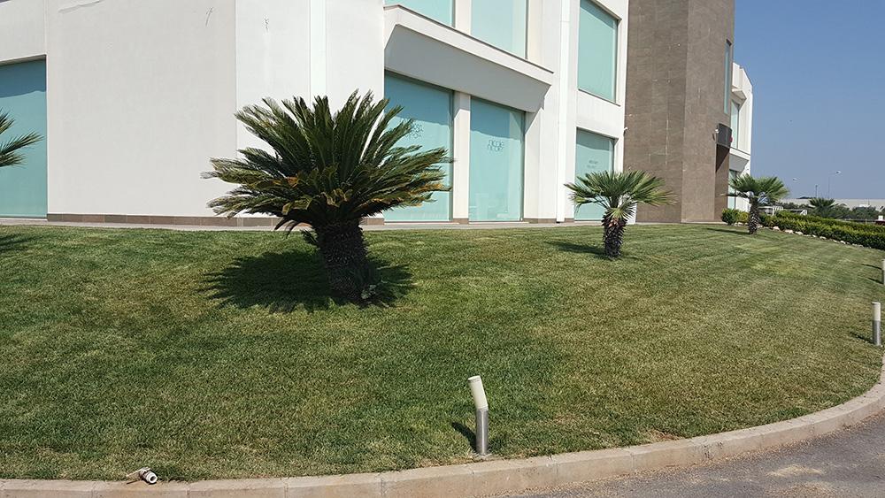 Potature alberi brindisi