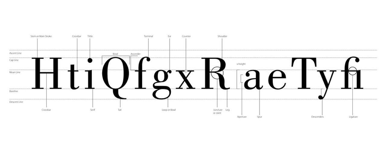 Anatomia del font da Arti Grafiche Cossidente