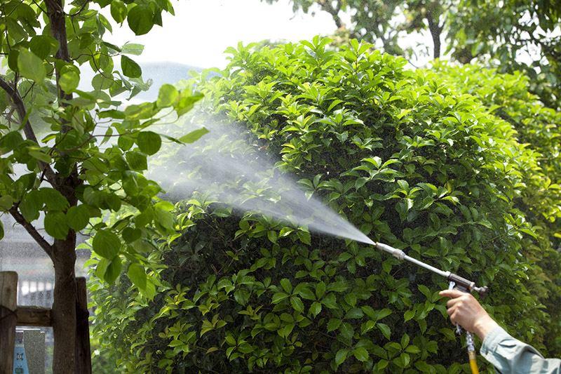servizi giardinaggio pubblico