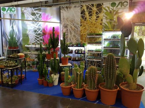 Exhibitions and Tradeshows Imperia Liguria Italy | AG SANREMO