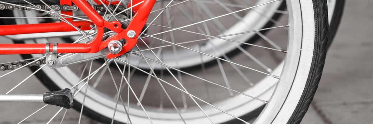 attrezzature per ciclismo Albano Laziale Roma
