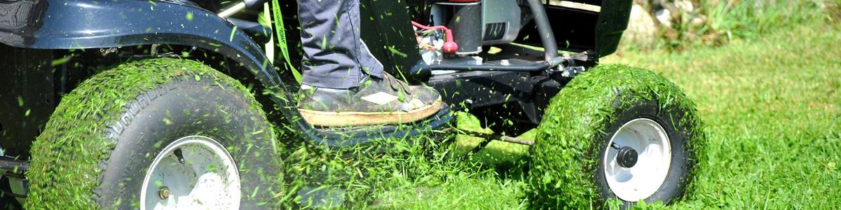 Prodotti e strumenti per il giardinaggio