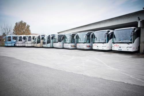 idealviaggi autobus
